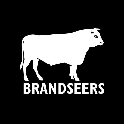Brandseers Identity